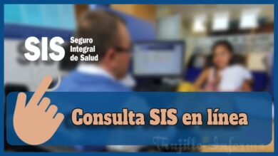Consulta SIS en línea 2021
